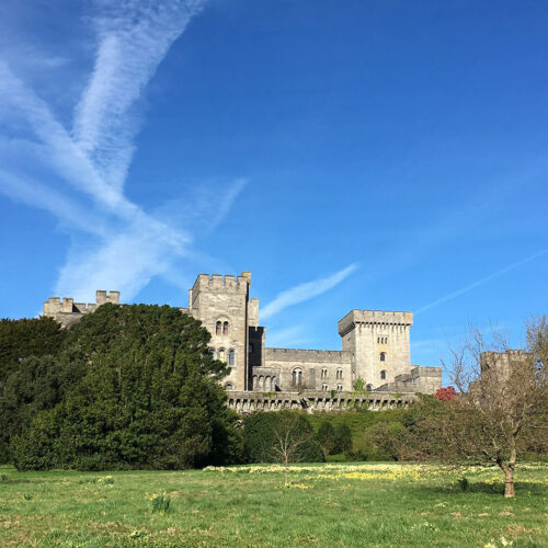 Penrhyn Castle and Gardens