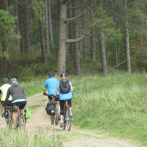 Green Lane Bike Tours